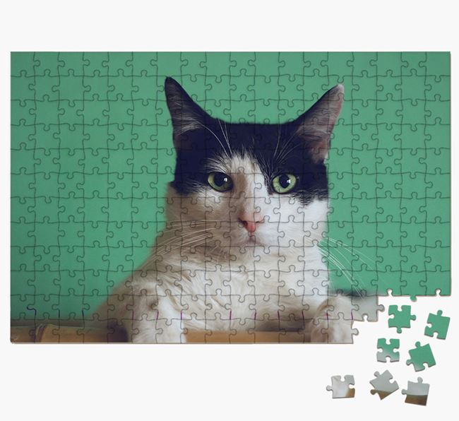 Photo Upload Jigsaw Puzzle - Personalised for your Domestic Shorthair