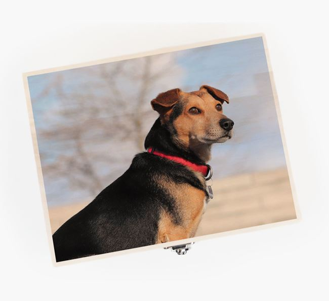 Personalised Photo Upload Wooden Box for your Dog