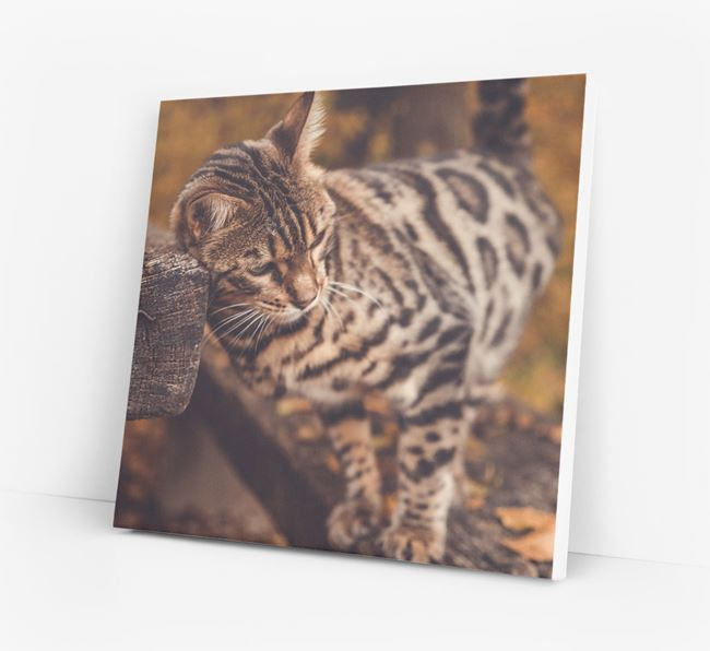 Photo Upload Canvas Print - Personalised for your Bengal