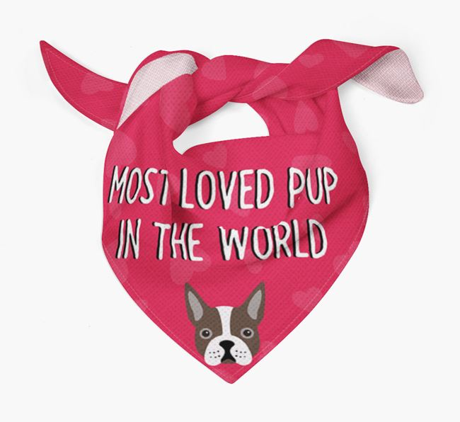 'Most Loved Pup in the World' - Personalised Boston Terrier Bandana