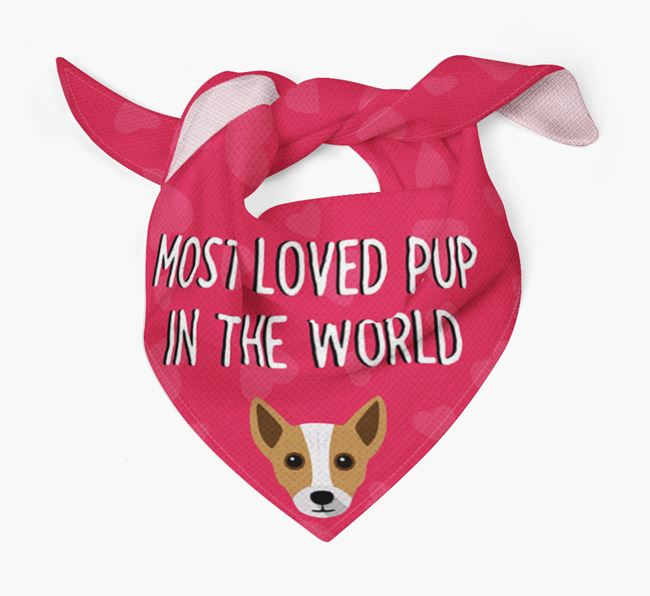 'Most Loved Pup in the World' - Personalised Chi Staffy Bull Bandana