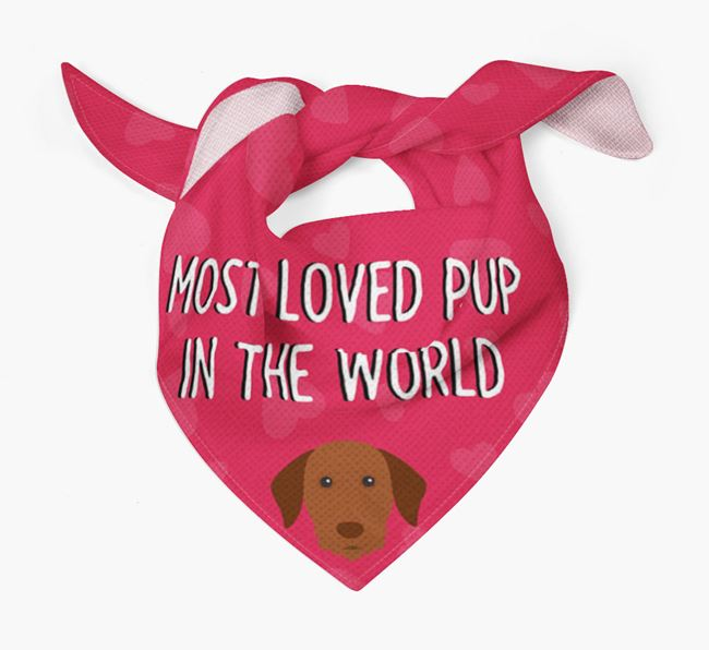 'Most Loved Pup in the World' - Personalised Hungarian Vizsla Bandana