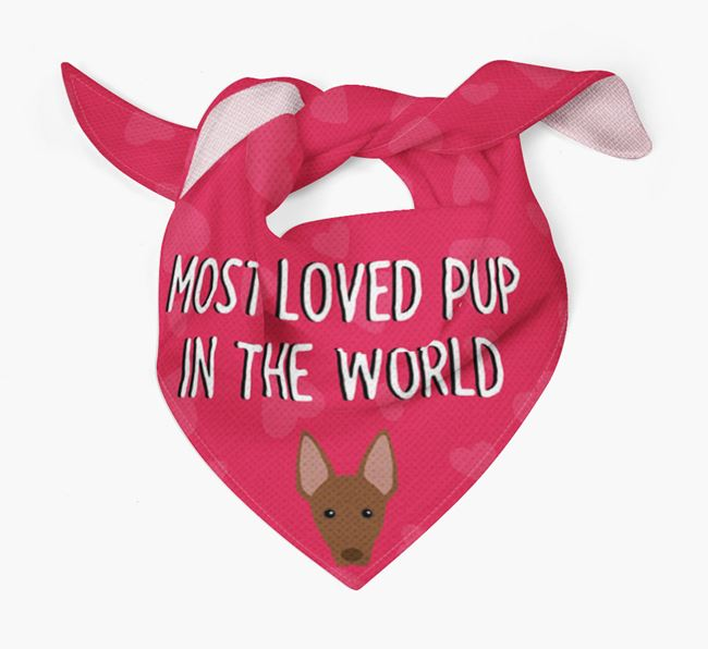 'Most Loved Pup in the World' - Personalised Mexican Hairless Bandana
