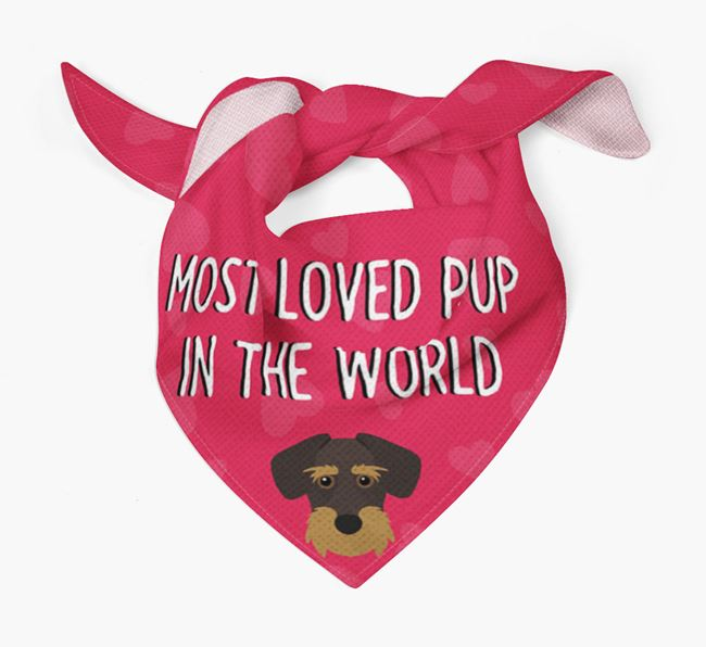 'Most Loved Pup in the World' - Personalised Miniature Schnoxie Bandana