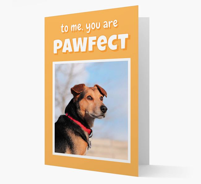 'You Are Pawfect' - Bearded Collie Photo Upload Card
