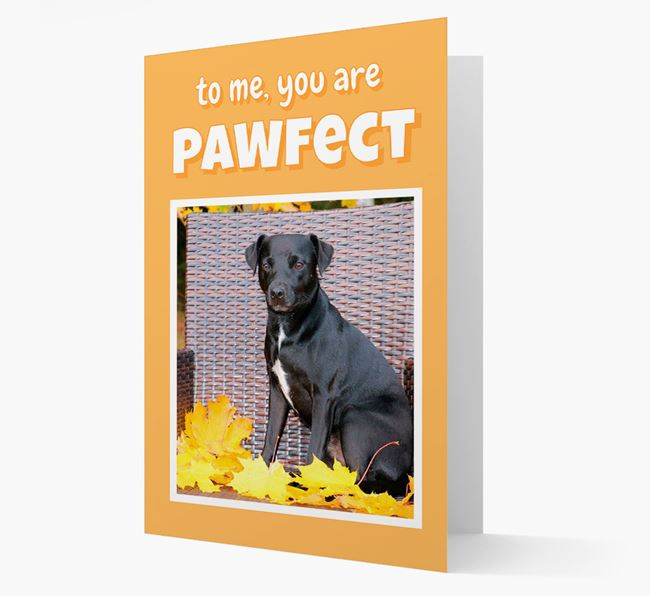 'You Are Pawfect' - Patterdale Terrier Photo Upload Card