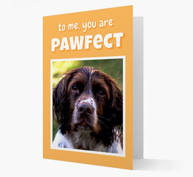 'You Are Pawfect' - Springer Spaniel Photo Upload Card