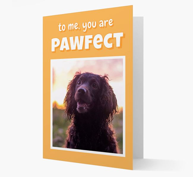 'You Are Pawfect' - Sprocker Photo Upload Card