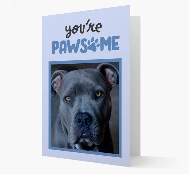 'You're Pawsome' - American Pit Bull Terrier Photo Upload Card