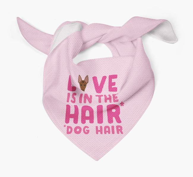 'Love is in the Hair' - Personalised Mexican Hairless Bandana