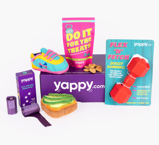 Yappy Box - Let's Chew This