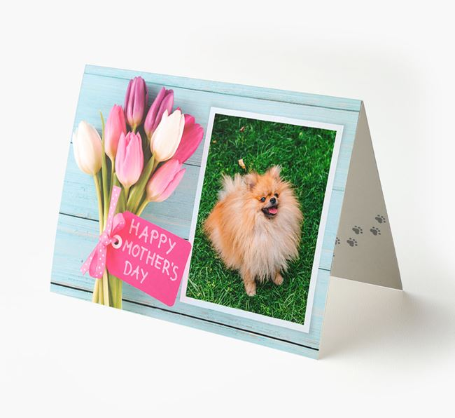Happy Mother's Day Tulips - Personalized Pomeranian Photo Upload Card