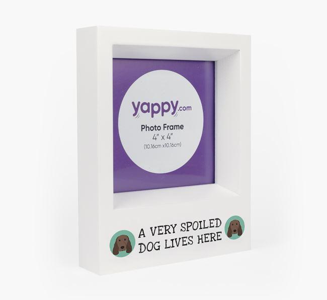 'A Spoiled Dog Lives Here' - Personalised Springer Spaniel Photo Frame