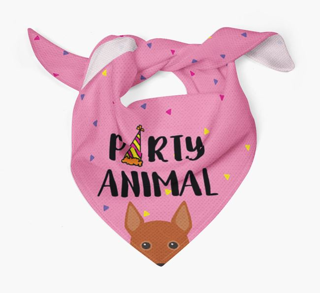 'Party Animal' Basenji Bandana