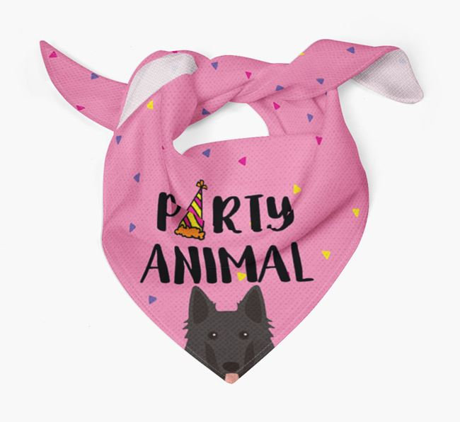 'Party Animal' Belgian Shepherd Bandana