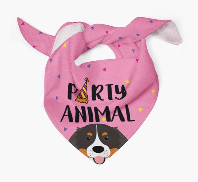 'Party Animal' Bernese Bandana