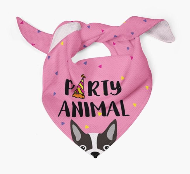 'Party Animal' Boston Terrier Bandana