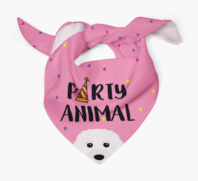 'Party Animal' Cavachon Bandana