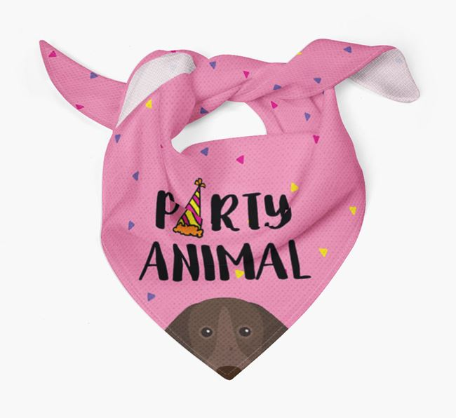 'Party Animal' Shorthaired Pointer Bandana