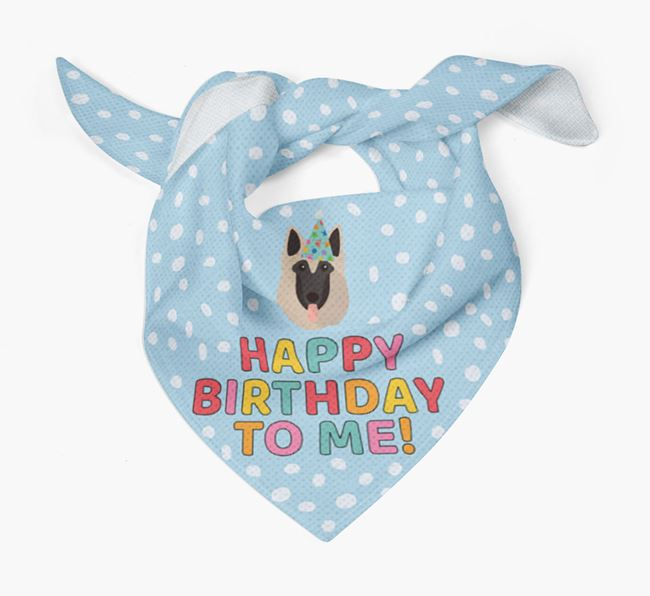 'Happy Birthday To Me' - Personalised Belgian Tervuren Bandana