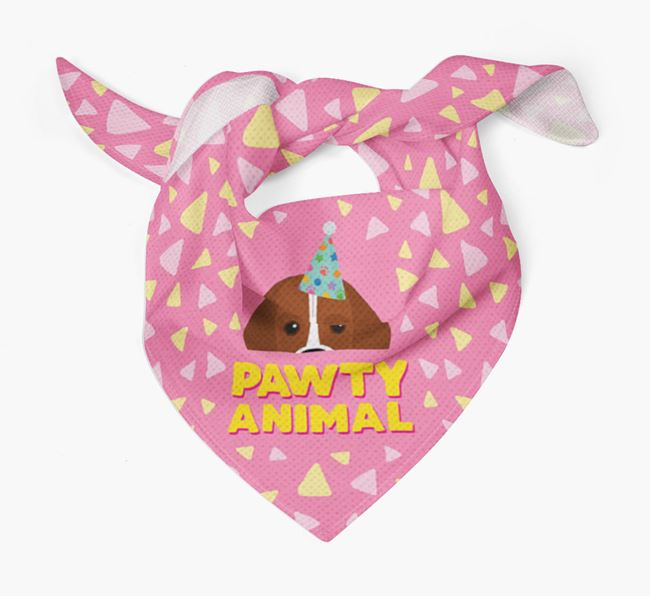 'Pawty Animal' - Personalised Bassugg Bandana
