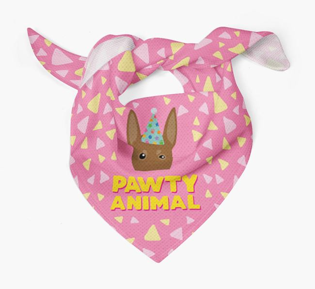 'Pawty Animal' - Personalised German Pinscher Bandana