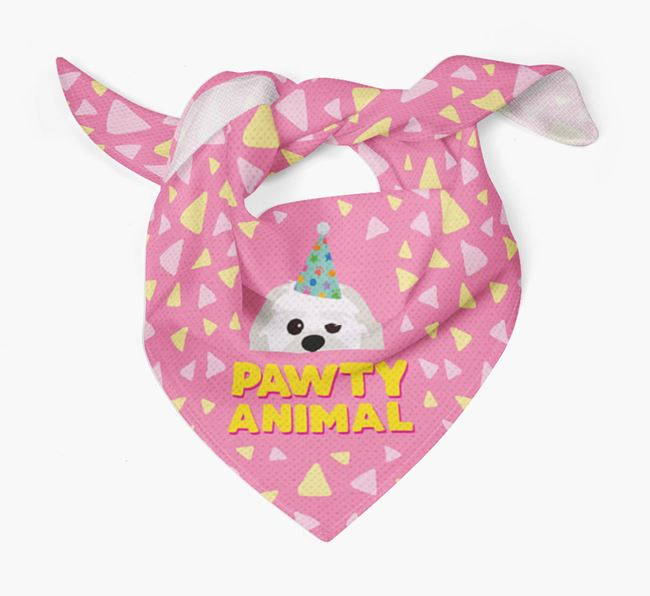 'Pawty Animal' - Personalised Lachon Bandana