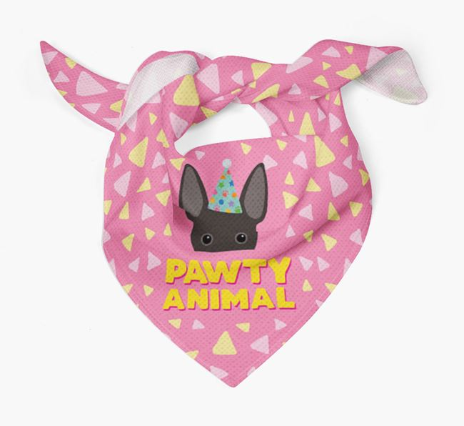 'Pawty Animal' - Personalised Rat Terrier Bandana