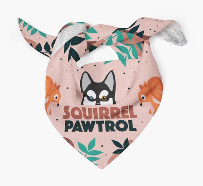 'Squirrel Pawtrol' - Personalised Alaskan Klee Kai Bandana