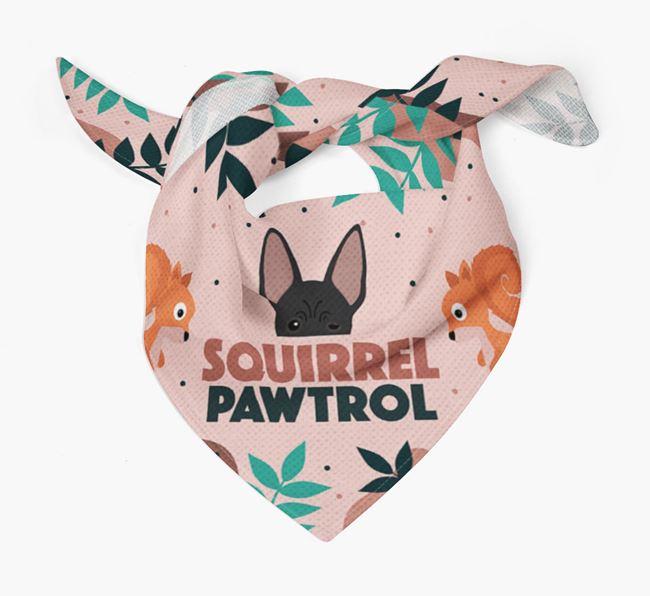 'Squirrel Pawtrol' - Personalised American Hairless Terrier Bandana