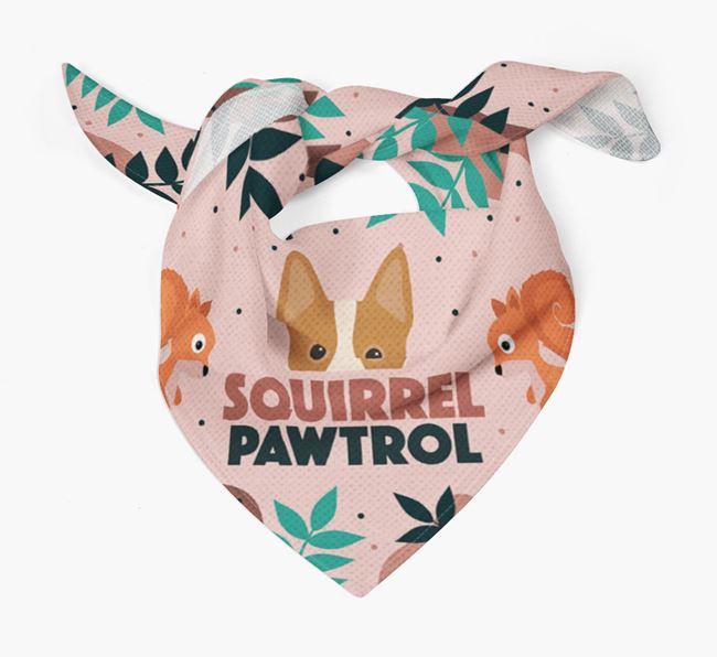 'Squirrel Pawtrol' - Personalised Australian Cattle Dog Bandana