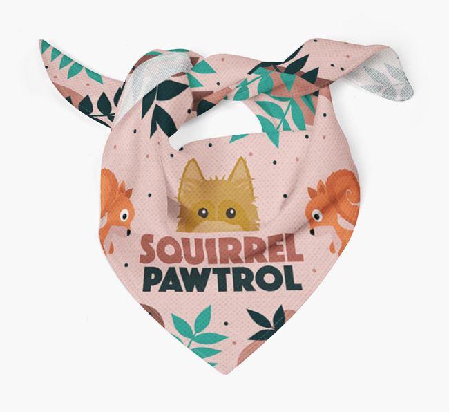 'Squirrel Pawtrol' - Personalised Australian Silky Terrier Bandana