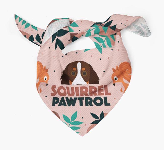 'Squirrel Pawtrol' - Personalised Brittany Bandana