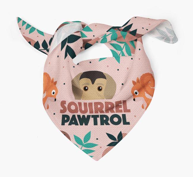 'Squirrel Pawtrol' - Personalised Greek Harehound Bandana