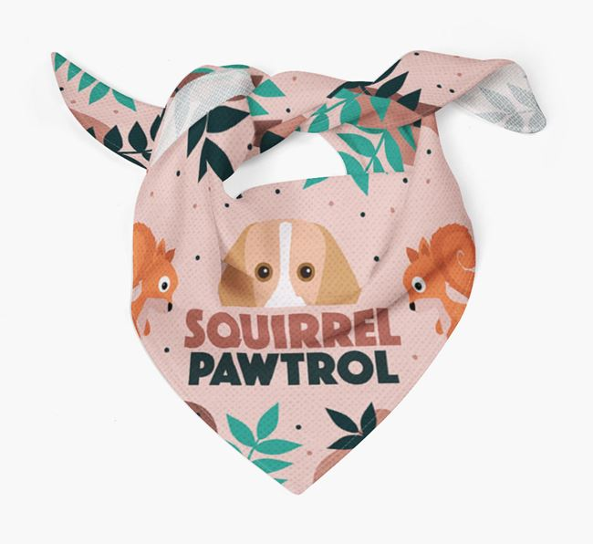 'Squirrel Pawtrol' - Personalised Harrier Bandana