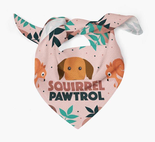 'Squirrel Pawtrol' - Personalized Hungarian Vizsla Bandana