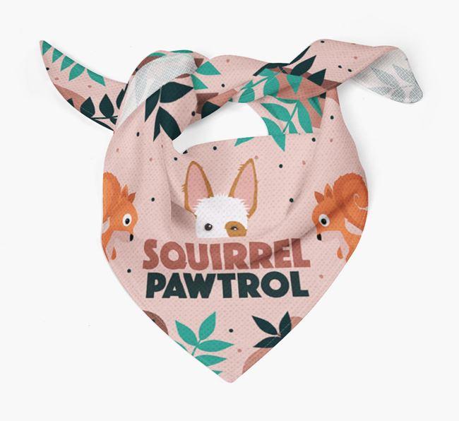 'Squirrel Pawtrol' - Personalised Ibizan Hound Bandana