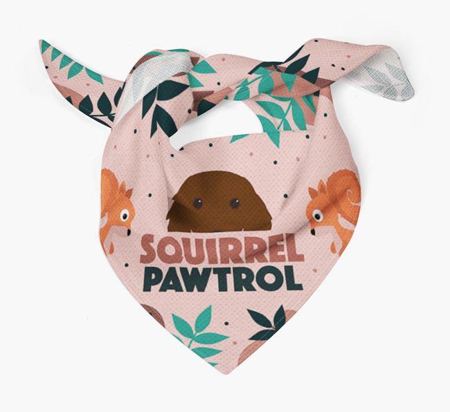 'Squirrel Pawtrol' - Personalised Irish Setter Bandana