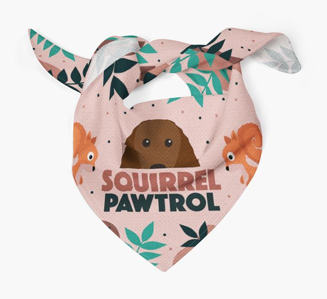 'Squirrel Pawtrol' - Personalised Irish Water Spaniel Bandana