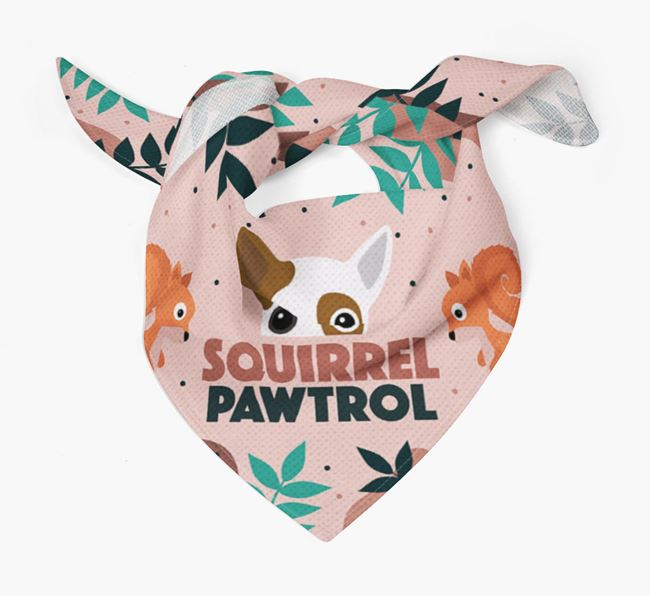 'Squirrel Pawtrol' - Personalised Jackahuahua Bandana
