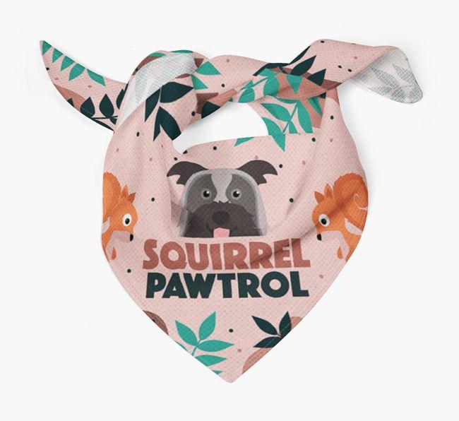 'Squirrel Pawtrol' - Personalised Pyrenean Shepherd Bandana