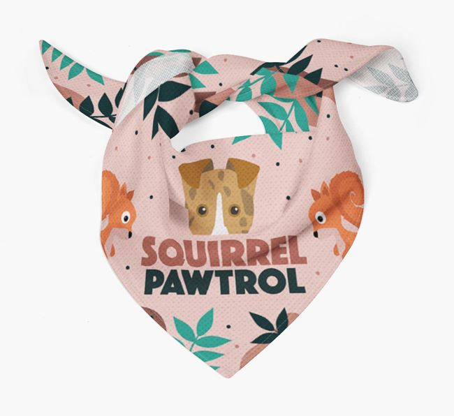 'Squirrel Pawtrol' - Personalised Smooth Collie Bandana