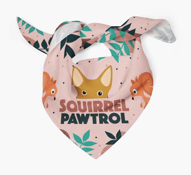 'Squirrel Pawtrol' - Personalised Swedish Vallhund Bandana