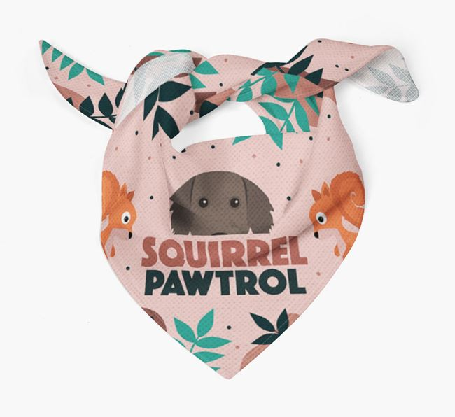 'Squirrel Pawtrol' - Personalised Weimaraner Bandana