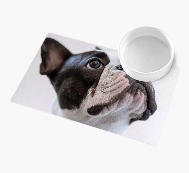 Full Photo Upload - Personalised French Bulldog Feeding Mat