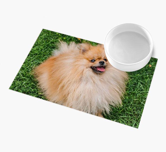 Full Photo Upload - Personalised Pomeranian Feeding Mat
