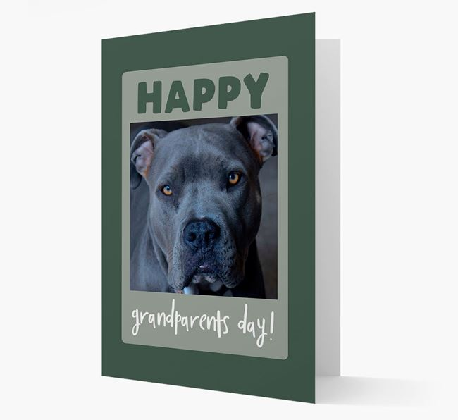 'Happy Grandparent's Day!' - Photo Upload American Pit Bull Terrier Card