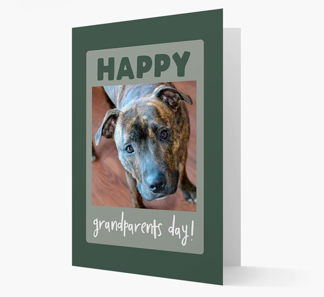 'Happy Grandparent's Day!' - Photo Upload Staffordshire Bull Terrier Card