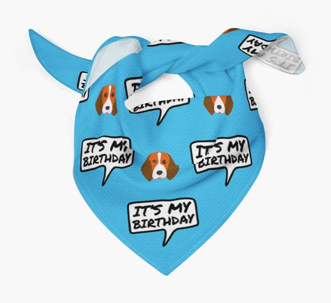 It's My Birthday Beagle Bandana
