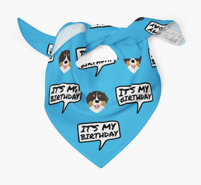 It's My Birthday Bernese Mountain Dog Bandana